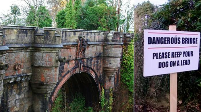 Overtoun bridge dog suicide